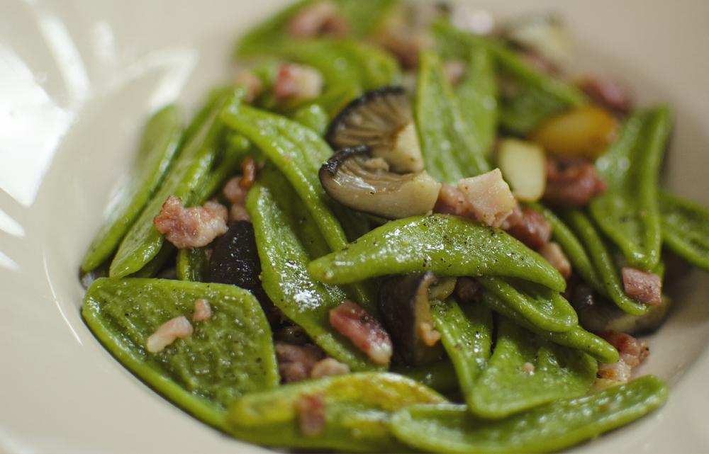 foglie di ulivo speciali centoni fresca