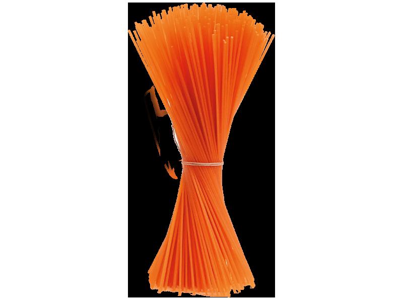 peperoncino spaghetti formato centoni2